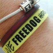 Domenica FreeDog